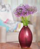 Den jätte- löken (Allium Giganteum) blommar i blommavasen på flik Fotografering för Bildbyråer