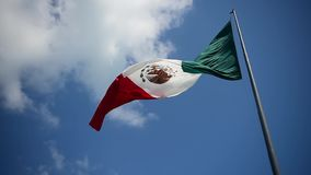 Den jätte- mexikanska flaggan flyger i vinden i Cancun arkivfilmer