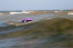 Den jätte- schnauzeren simmar med en puller på bränninglinjen i vågorna i havet fotografering för bildbyråer