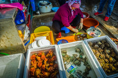 Den Jeju kvinnan förbereder rå skaldjur för att tjäna som till hennes kund Arkivfoto