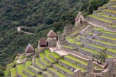 Den jordbruks- stenen terrasserar på Machu Picchu i Peru Royaltyfri Foto