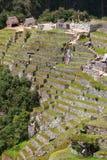 Den jordbruks- stenen terrasserar på Machu Picchu i Peru Arkivfoto