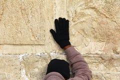 Den judiska dyrkaren ber på den att jämra sig väggen Royaltyfria Foton
