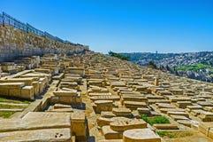 Den judiska kyrkogården Royaltyfri Fotografi