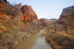 Den jungfruliga floden, Zion National Park. Utah. Royaltyfria Bilder