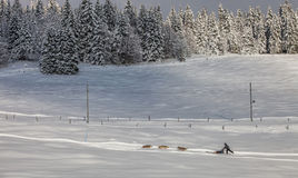 Den Jura bergvintern landskap III Arkivfoto