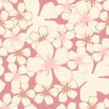 Den körsbärsröda blomningen blommar den sömlösa modellen Royaltyfri Fotografi