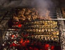 Den köttsteknålar och fisken på grillfesten bränner till kol Arkivfoto