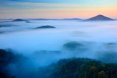 Den kalla dimmiga dimmiga morgonen i en nedgångdal av bohemmet Schweiz parkerar Kullar med dimma, landskap av Tjeckien Arkivbilder