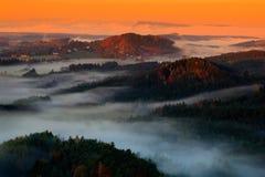 Den kalla dimmiga dimmiga morgonen i en nedgångdal av bohemmet Schweiz parkerar Kullar med dimma, landskap av Tjeckien, nationalp Royaltyfria Foton