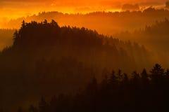 Den kalla dimmiga dimmiga morgonen i en nedgångdal av bohemmet Schweiz parkerar Kullar med dimma, landskap av Tjeckien, solstråle Fotografering för Bildbyråer