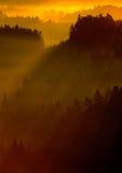Den kalla dimmiga dimmiga morgonen i en nedgångdal av bohemmet Schweiz parkerar Kullar med dimma, landskap av Tjeckien, solstråle Arkivfoton