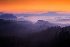 Den kalla dimmiga dimmiga morgonen med skymningsoluppgång i en nedgångdal av bohemmet Schweiz parkerar Kullar med dimma, landskap Royaltyfria Foton