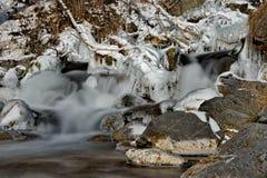 In den kalten Flüssen der Altai-Berge des Spätherbsts im Trinkwasser sehr Stockfotografie