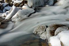 In den kalten Flüssen der Altai-Berge des Spätherbsts im Trinkwasser sehr Lizenzfreie Stockbilder