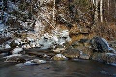 In den kalten Flüssen der Altai-Berge des Spätherbsts im Trinkwasser sehr Lizenzfreie Stockfotografie