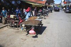 Den kambodjanska kvinnan säljer exotisk mat på en gata Royaltyfri Bild