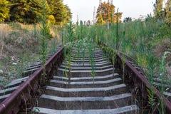 Den kastade järnvägen i Abchazien Royaltyfri Fotografi