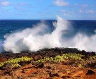 Den Kauaian kustlinjen Arkivfoto