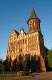 Den Kenigsberg domkyrkan är det huvudsakliga symbolet av staden Kaliningrad royaltyfri foto