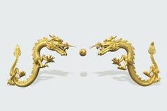 Den kinesiska draken Royaltyfri Fotografi