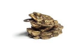 Den kinesiska fengshuiamuletten Royaltyfri Foto