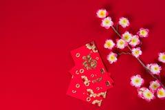 Den kinesiska garneringöverkanten för det nya året beskådar ner med copyspace arkivfoto