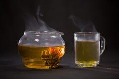 Den kinesiska knoppen för grönt te blommar i en glass tekanna En kupa av tea Arkivbilder