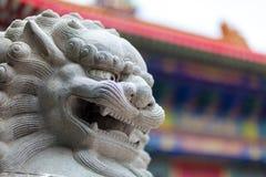 Den kinesiska lejonlyckan Arkivfoto