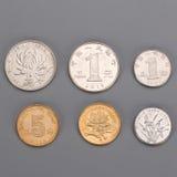 Den kinesiska yuanen myntar en yuan royaltyfria bilder