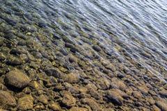 Den klara floden bevattnar Fotografering för Bildbyråer