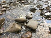 Den klara floden med vaggar royaltyfri foto