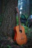 Den klassiska gitarren parkerar in Arkivfoto