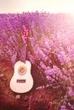 Den klassiska lilla gitarren som läggas på en lavendelfältrad under soluppgången, rays Royaltyfri Foto