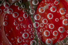 Den kolsyrade drinken bubblar på röd kulör bakgrund Arkivfoton