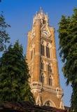 Den Kommunal Korporation byggnaden Arkivbild