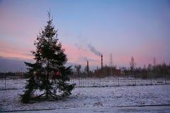 Den kommunala gatan dekorerade dåligt julgranen på kanten av industriområdet av staden av St Petersburg Arkivbild