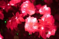 Den konstgjorda rosa färgblomman har lett ljus i den Fotografering för Bildbyråer