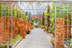 Den konstiga jardiniereskulpturblicken som mänsklig framsida i Nong Nooch den tropiska trädgården i Pattaya, Thailand Royaltyfri Foto