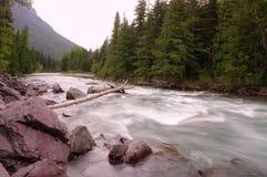 Den Kootenai floden Arkivbilder
