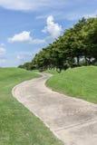 Den krökta banagräsplangolfbanan och den härliga naturplatsen Royaltyfri Foto