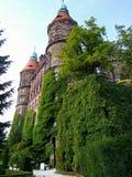 Den KsiÄ… Å ¼slotten som lokaliseras i WaÅ 'brzych i Polen royaltyfri fotografi