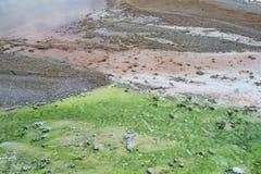 Den kulöra geyserrunoffen i Norris Geyser Basin Yellowstone National parkerar Arkivfoton