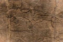 Den kungliga Lion Hunt, assyrisk konstform 645 - 635 F. KR. Royaltyfri Bild