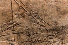 Den kungliga Lion Hunt, assyrisk konstform 645 - 635 F. KR. Arkivfoto