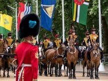 Den kungliga vakten står till uppmärksamhet, som hushållkavalleri förbigår på gallerian, London, UK arkivfoto
