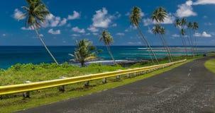 Den kust- vägen fodrade med palmträd som förbiser det tropiska havet, Samoa arkivfilmer