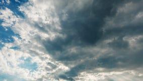 Den kvalitativa tidschackningsperioden av flyggrå färger fördunklar mot blå himmel, inget fladdrande, inga fåglar arkivfilmer