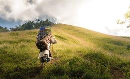 Den kvinnliga bergportvakten Arkivfoton