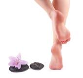 Den kvinnliga foten och Spa stenar med brunnsorten blommar Royaltyfri Fotografi